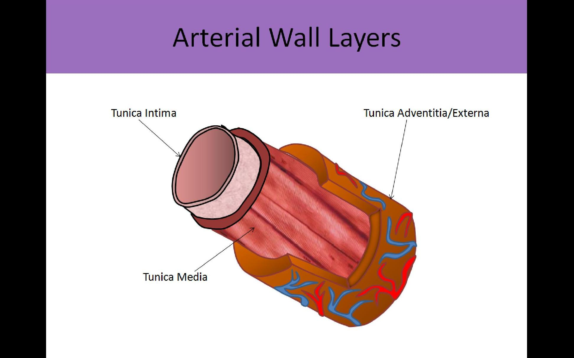 Abdominal Trial Page